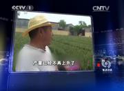 焦点访谈推荐施用有机肥料